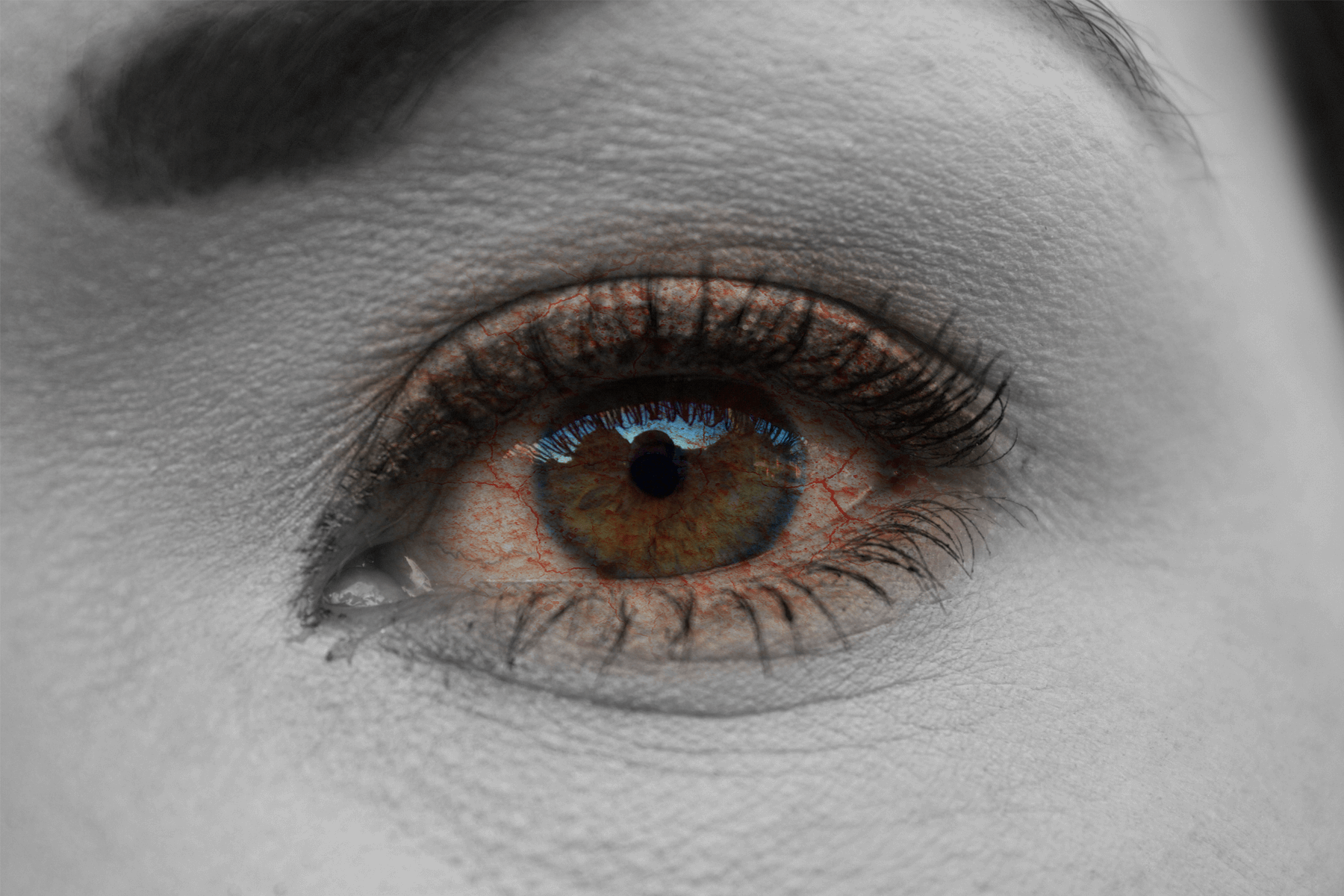 How Your Eye Doctor Can Tell If You Have Dry Eyes