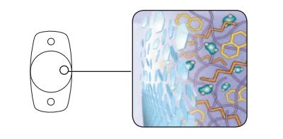 The Staar nanoFLEX® Intraocular Lens